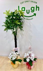 ラフ湘南台店へお祝いのお花と観葉植物