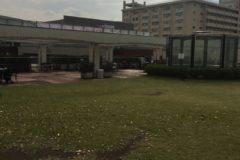 芝生 たまプラ ガーデンテラス